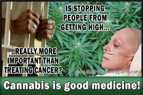 cannabis good medicine.jpg